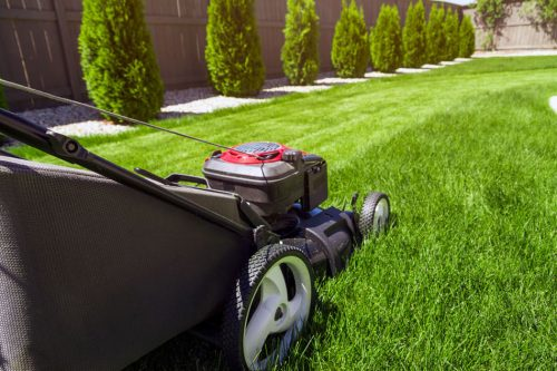 Lawn Mowing Service in northern Virginia